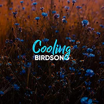 Cooling Birdsong