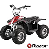 Razor Dirt Quad - Black - 25143002