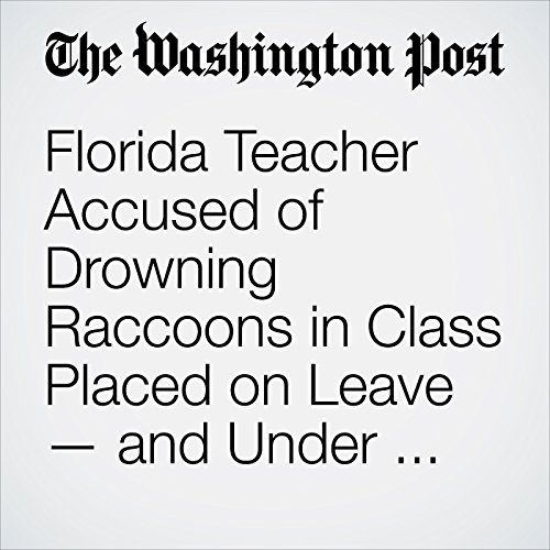 Florida Teacher Accused of Drowning Raccoons in Class Placed on Leave — and Under Investigation copertina