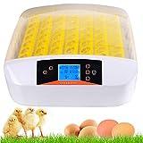 Couveuses Incubateur entièrement automatique Incubateur intelligent de 56 œufs Eleveur à moteur pour incubateur Poulets avec affichage de la température par LED et contrôle de l'humidité (56 œufs-)