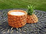 Jeray Insulated Retro Pineapple Ice Bucket Chiller