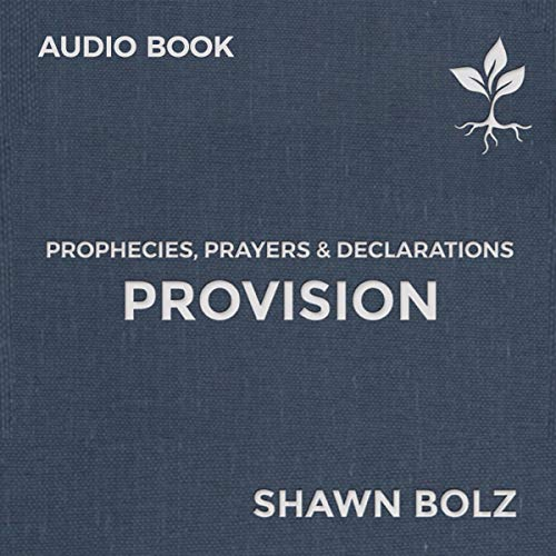 Provision: Prophecies, Prayers & Declarations (2) cover art