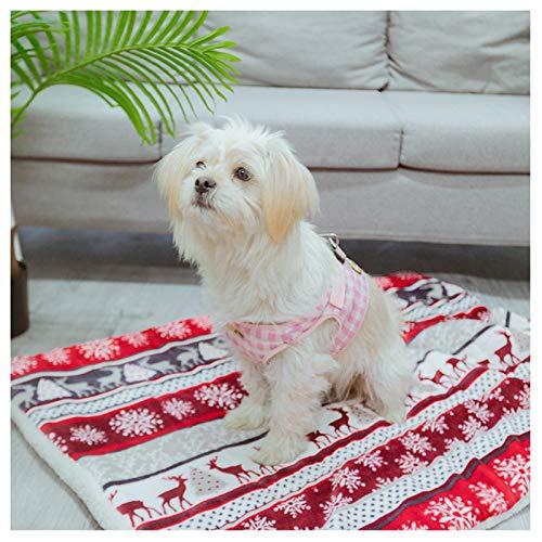 REW Haustier-Katzenbett, beheizbar, thermisch, selbstheizend, für Katzen, Hunde, Welpen und andere kleine Haustiere