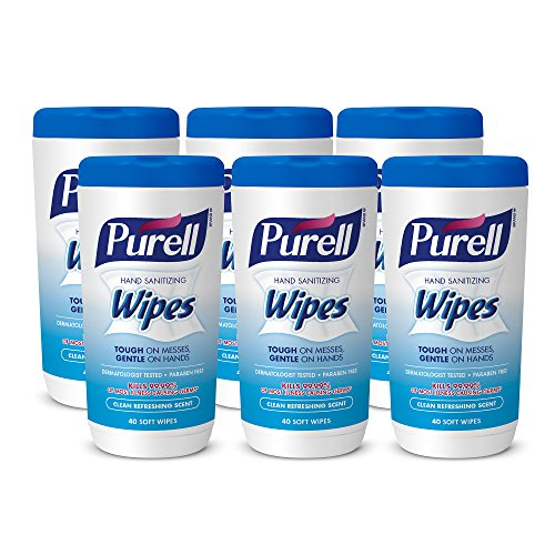 PURELL Hand Sanitizing Wipes, Clean Refreshing Scent, 40 Count Hand Wipes Canister (Pack of 6) - 9120-06-CMR,White