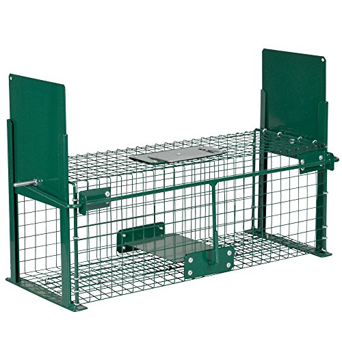 Piège Cage cas 50cm Vivants...