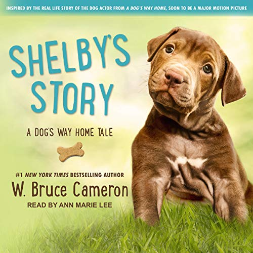Shelby's Story audiobook cover art