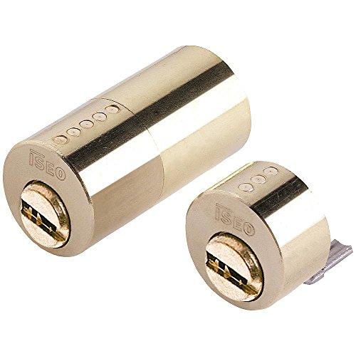 ISEO 3171050 Cilindro R6 Seguridad para Cerradura 500