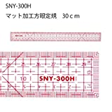 三友教材 方眼定規片面マット加工30cm SNY-300H