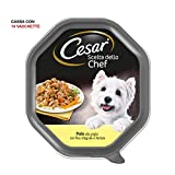 Cesar Elección del Chef - Comida para Perro, delicias de Temporada, 150 g, 14 bandejas