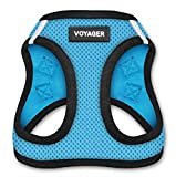 Voyager Step-in Air Dog Harness - All Weather Mesh, Step in Vest Harness for Small and Medium Dogs by Best Pet Supplies, Baby Blue Base, XL (Chest: 21 - 23'), Model Number: 207-BBB-XL