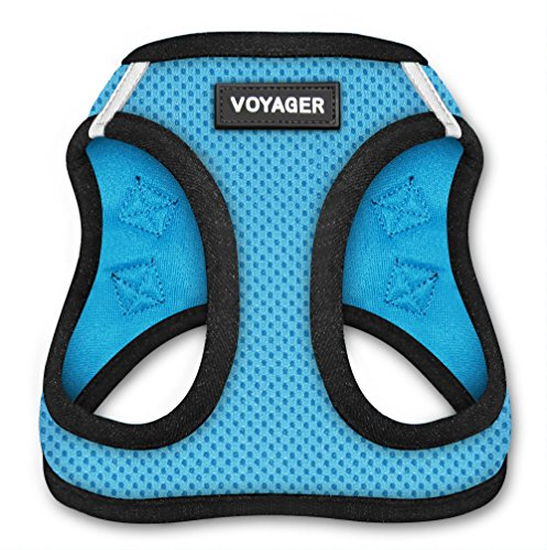 Best Pet Supplies Voyager Step-in Air Dog Harness - All Weather Mesh, Step in Vest Harness for Small and Medium Dogs, Baby Blue Base, XXXS (Chest: 9.5-10.5