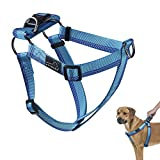 PETBABA No Pull Dog Harness, Front Clip Give Pet Choke Free Walking, Reflective Safety at Night, Step-in Vest with Martingale Handle Suitable Controlling in Heavy Traffic in Blue