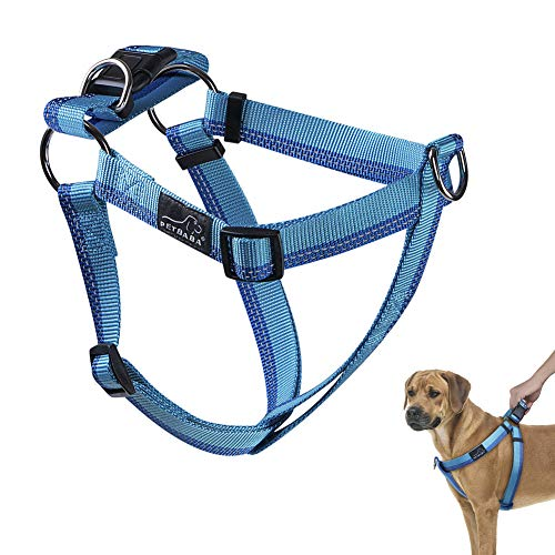 Step in Harness Clips in Back or Front