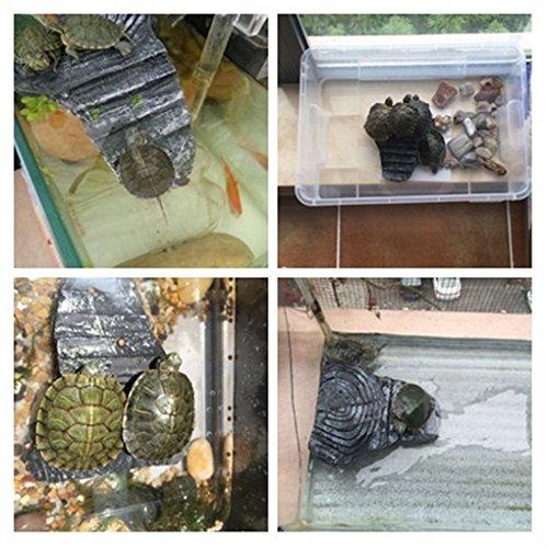 Masterein Schildkröten-Behälter für Reptilien