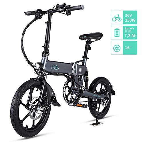 FIIDO D2 Vélo Électrique Pliant, Confortable et lmperméable, 36V 250W Batterie au Lithium à...