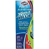 CLOROX Pool&Spa Algaecide Xtra Blue, 40-Ounce 43040CLX, (VAR)