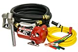 Fill-Rite RD812NH 8 GPM 12V Portable Fuel Transfer Pump with Manual Nozzle, Discharge Hose, Suction Hose, and Power Cord