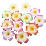 Frcolor 12 Stück Hawaii Blumen Haarspange Haarclip Plumeria für Strand Party Hochzeit Dekoration