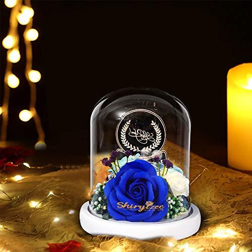 shirylzee Rose Incantate con Luci LED Rosa Eterna di seta La Bella e la Bestia regalo di Natale Regali Magici Decorazioni per Festa della Mamma della s.Valentino Anniversario di Matrimonio Vacanza