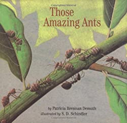 Those Amazing Ants Book for children