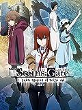 Steins;Gate The Movie: Load region of deja vu