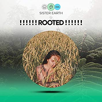 ! ! ! ! ! ! Rooted ! ! ! ! ! !