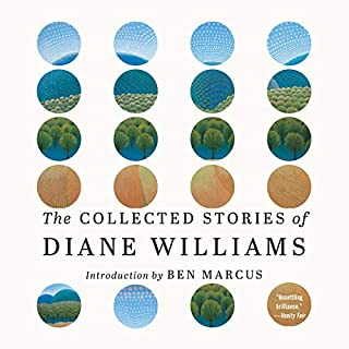 The Collected Stories of Diane Williams audiobook cover art