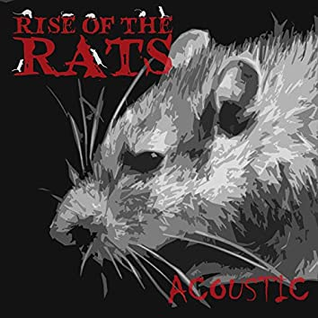 Rise of the rats