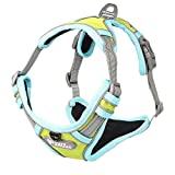 HIGHKAS Dog Vest Safety Pet Leash- Completamente Ajustable | Prevenir El Arnés De Escapada para Perros Grandes Y Extra Grandes
