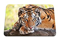 22cmx18cm マウスパッド (大きな猫の捕食者を横になっている虎石) パターンカスタムの マウスパッド