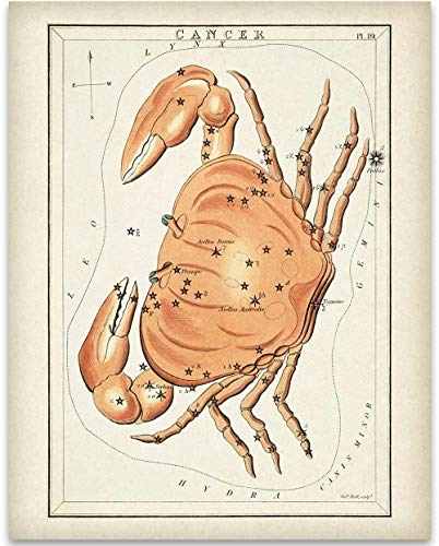 Cancer Zodiac Crab Antique Constellation Art Print - 11x14 Unframed Art Print - Great Decor and Gift for Birthday and Astrology Enthusiasts Under $15