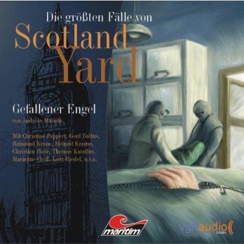 Gefallener Engel audiobook cover art