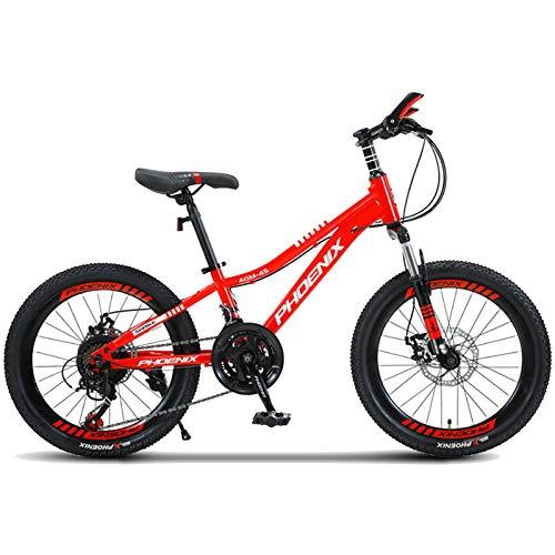 Axdwfd Infantiles Bicicletas Bicicleta para Niños 20 Pulgadas Variable Velocidad Mountain Bike Mascule Y Femenino Estudiante Bicicleta Juventud Off-Road Absorción (Color : B)