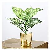 Plantas Artificiales Artificial Monstera árbol 13.8' palma planta plantas falso tropical perfecto de imitación de oro en crisol de cerámica for la cubierta de la casa del estreno de una oficina modern