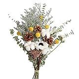 WYH Flores reales Flores artificiales flores secas naturales secadas al aire pequeña margarita pino cono de algodón Decoración de mesa Adornos Ramo de flores con entrega a domicilio (color: C)