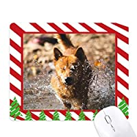 日本の犬のかわいい動物の写真 ゴムクリスマスキャンディマウスパッド