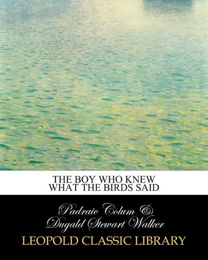 不均一サイバースペース岸The boy who knew what the birds said