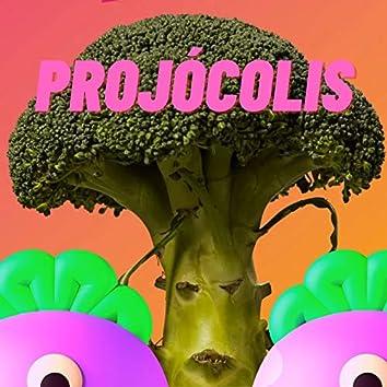 The Life of Projócolis