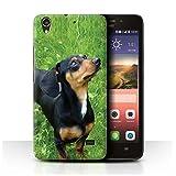 Hülle Für Huawei Ascend G620S Hund/Eckzahn Rassen