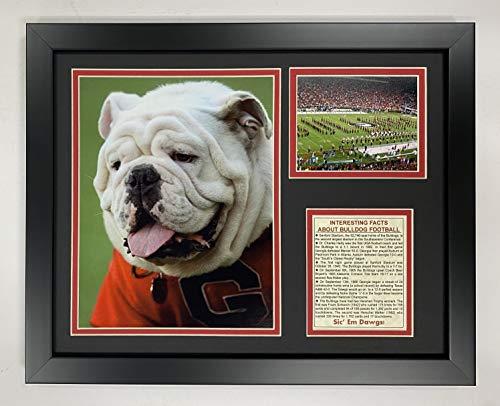 georgia bulldogs collectibles - 8
