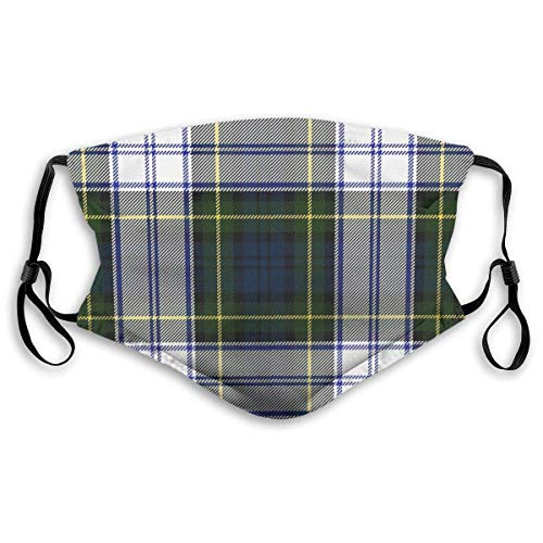 Face Cover Dust Masks Full Face Gordon Dress Tartan Plaid Ski Mask,Dust Mask,Hat Neck Gaiter Headwear Mouth Masks with TwoFilters