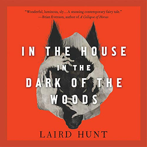 In the House in the Dark of the Woods audiobook cover art