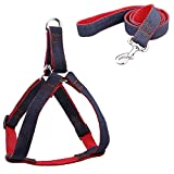 <span class='highlight'><span class='highlight'>Petastical</span></span> Best Dog Harness and lead set. Front range non pull harness. Adjustable Custom fit. Easy Control. Avoids choking, neck and shoulder strain, throat pressure.