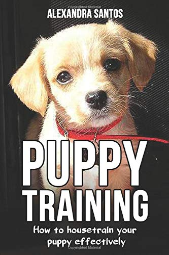 Puppy Training: How to housetrain your puppy effectively ((House training puppy, house training pads, puppy treats, house soiling problems, house training for outdoors, training program), Band 1)