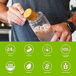 Optimum Nutrition Gold Standard 100% Plant Based Protein Powder, Vanilla, 19 Servings