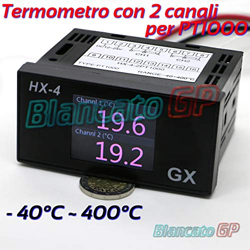 THERMOMETER mit 2 Kanälen PT1000 RTD TERMORESISTENDE SONDA SENSOR Temperatur