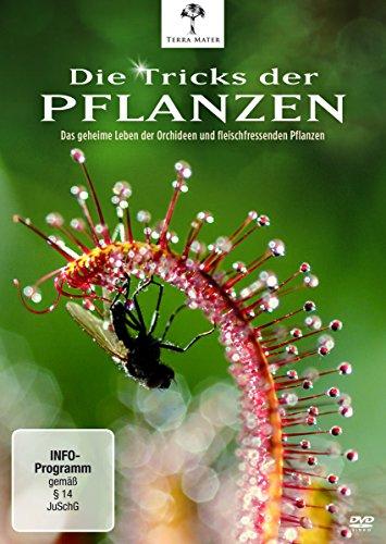 Die Tricks der Pflanzen