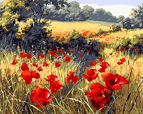 QGHMV DIY 5D Diamond Painting by Number Kits Beautiful Corn Poppy Round Full Drill Embroidery Arts Craft Canvas Supply for Home Wall Decor(16X20inch)