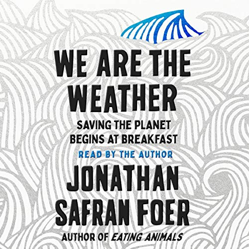 We Are the Weather audiobook cover art