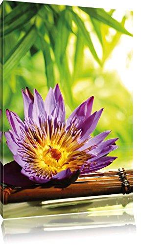 Seerose auf Bambus Wellness , Format: 60x80 auf hochkantiges Leinwand, XXL riesige Bilder fertig gerahmt mit Keilrahmen, Kunstdruck auf Wandbild mit Rahmen, günstiger als Gemälde oder Ölbild, kein Poster oder Plakat